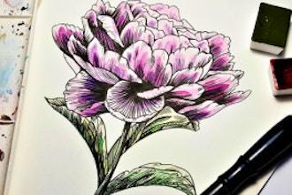 art/botanical-drawing/e0b9a59eef1ac8d91bfe5bc7f107dc27.jpeg
