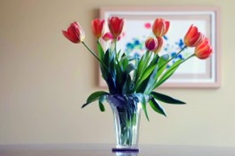 art/floral-design/81ed8af91123ad76f9f6cd3760fa6222.jpeg