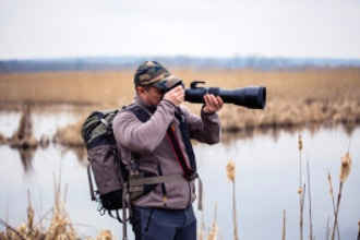 Bird & Wildlife Photography