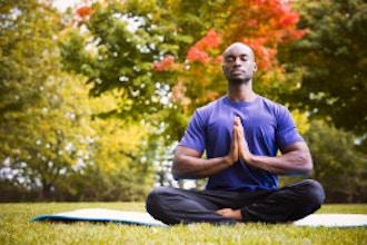 Yoga Basics for Beginners & Beyond