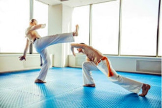 Adult Capoeira Level 1 (Beginner)