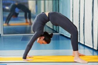 fitness/gymnastics/8ac43b512c4336c0bb1f4a7107c3be01.jpeg