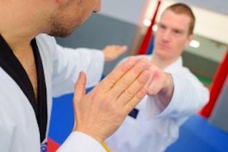 Kendo (Beginner)