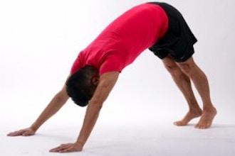Flexibility 2: Intermediate
