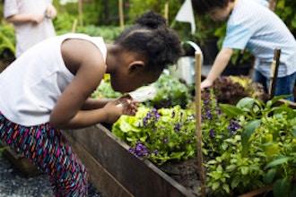 Spring Children's Garden