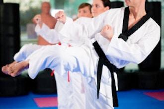 Taekwondo 3rd -6th grade