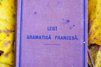 French 6: Spécialiste