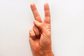 Total Beginner ASL