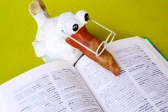 TOEFL Prep Intensive