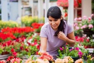 FiftyForward Gardening