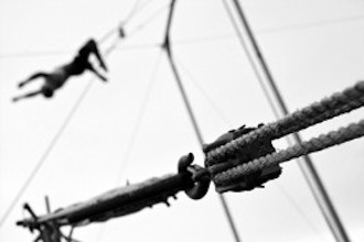 flying trapeze san diego