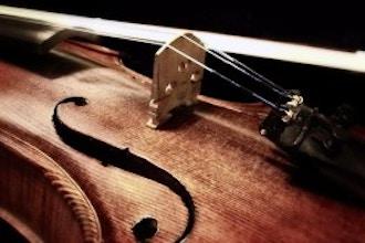 performing-arts/violin/5d5b5e4871029a0ac0392985a96d8a31.jpeg