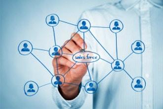 Salesforce.com: Administrator (Lightning)