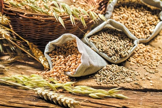 Bread:Heritage and Whole Grains