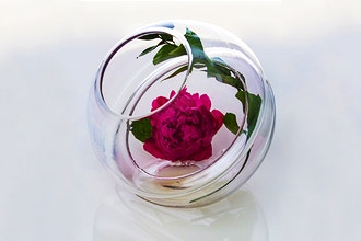 Glass and Flora: Designing Vessels for Flowers