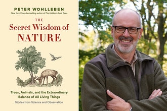 The Secret Wisdom of Nature: A Conversation with Peter