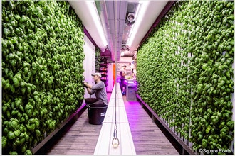 New Technologies for Urban Farming - Online