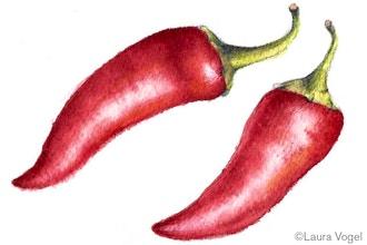 Peppers in Watercolor Weekend