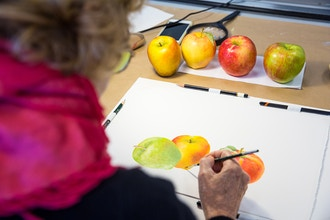 Botanical Watercolor for Beginners and Beyond