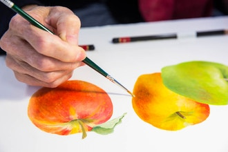 Botanical Watercolor for Beginners and Beyond - Online