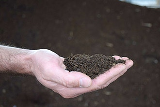 Compost: Food for Your Plants