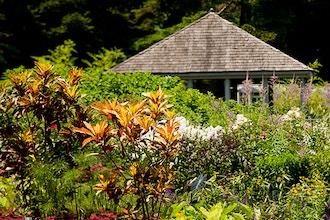 A Garden Design Primer