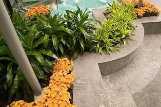 Interior Plantscapes - Online