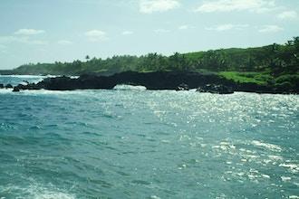 Georgia O'Keeffe and Hawai'i: A Sense of Place