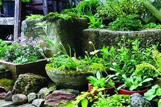 Hyper-Tufa Planter