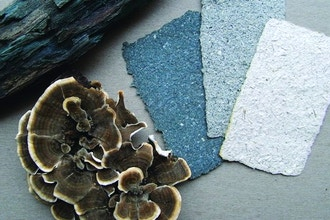 Mushroom Papermaking