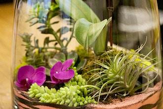 Living Décor: Terrariums with Air Plants & Orchids