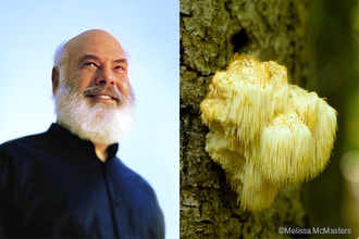 Dr. Andrew Weil: The Healing Power of Mushrooms