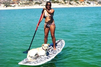 Stand Up Paddleboarding - Wave Riding Lesson