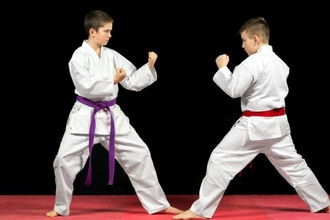Martial Arts Summer Camp 2017 (Ages 3-12)