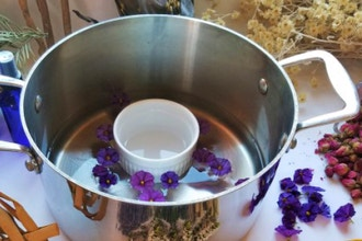 Plant Medicine: Aromatherapy and Hydrosols Crafting