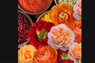 Virtual Floral Art: Moroccan Spice