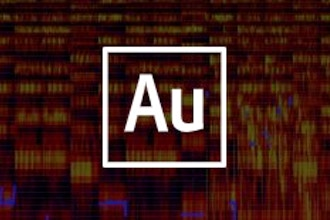 Adobe Audition Training