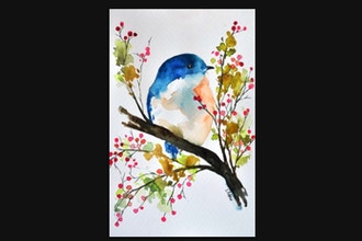 Watercolor Painting Workshop: How to Paint a Bird
