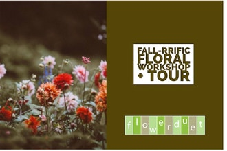 Fall, Tall & Terrific + TOUR Combo