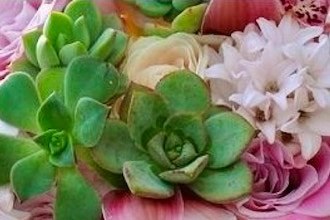 Garden Style Succulents & Flowers Workshop
