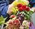 Design Star: Floral Design Comprehensive