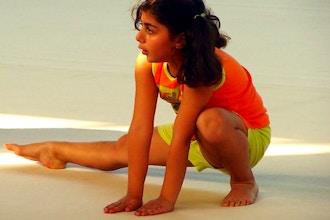 Gymnastics (Ages: 10+)