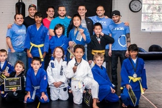 Kids Intro to MMA (ages 5-13)