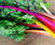 How to Cook Vegetables (Properly)