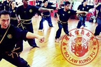 Bo Law Kung Fu Classes Nyc New York