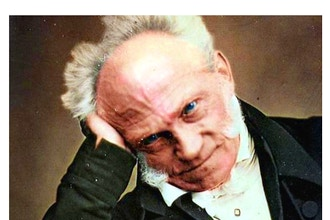 An Introduction to Schopenhauer