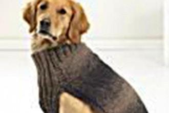 Anatomy of a Dog Sweater