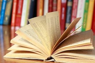The Next Bestseller Workshop