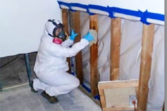 Certified Mold Professional Refresher