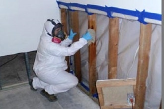 Certified Mold Professional Initial